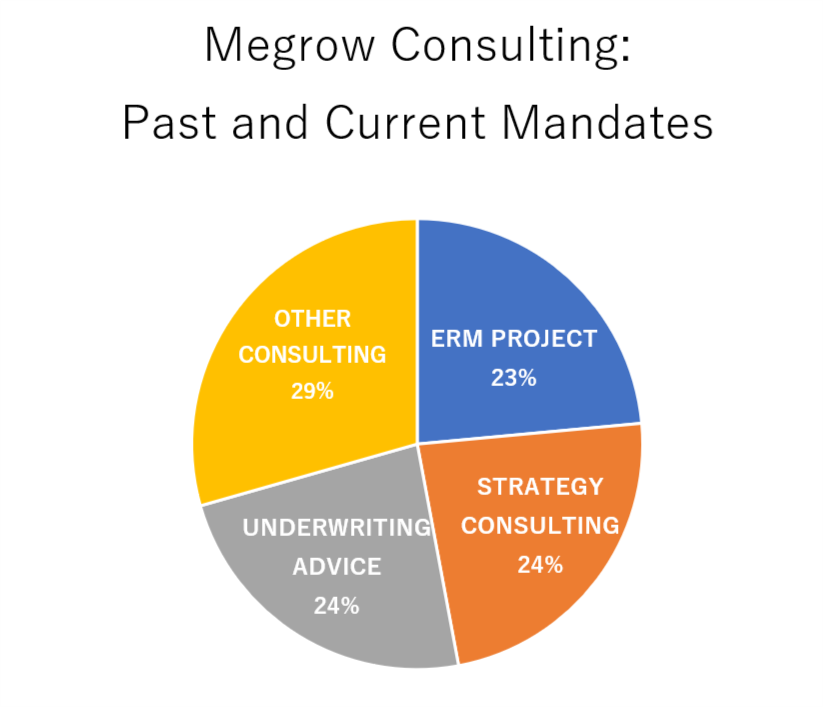 ERM-, strategy- and underwriting consulting are the main activities of Megrow consulting