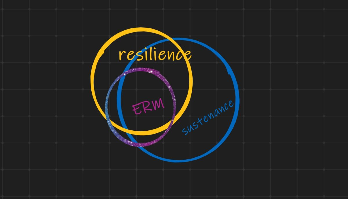 the link between sustenance resilience and ERM